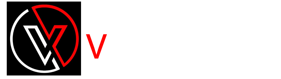 VideoView Web Logo